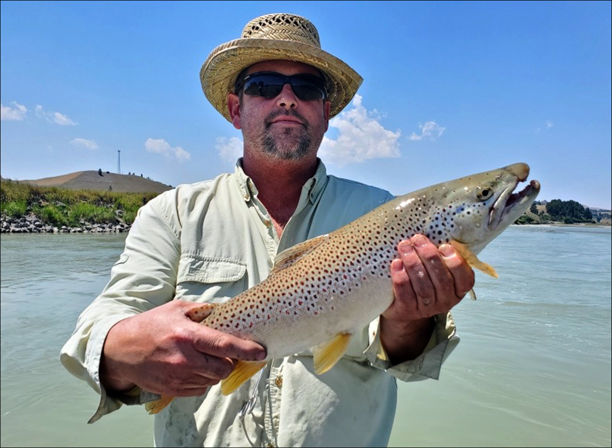 Andrew Parent Brown Trout on Yellowstone